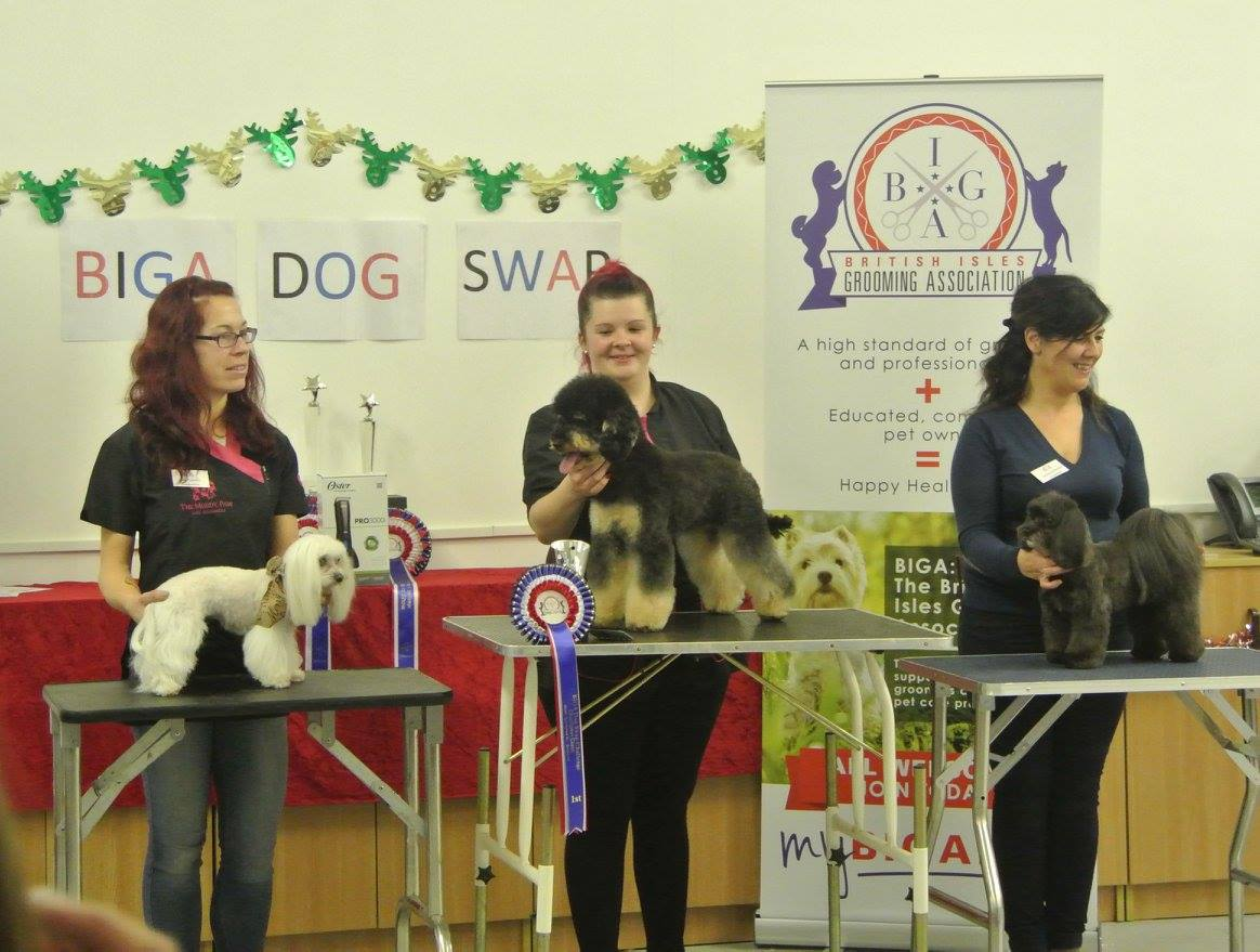 British Isles Grooming Association Events